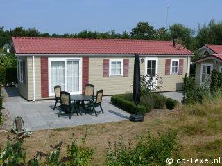 Texel 164